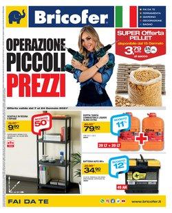 Offerte Bricolage e Giardino nella volantino di Bricofer a Civitavecchia ( Scade oggi )