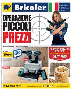 Offerte Bricolage e Giardino nella volantino di Bricofer a Pisa ( Per altri 6 giorni )