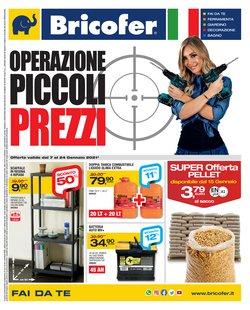 Offerte Bricolage e Giardino nella volantino di Bricofer a Avellino ( Per altri 7 giorni )