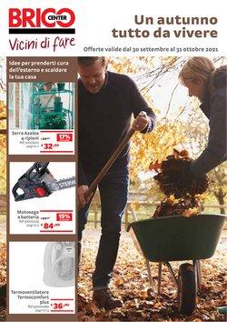 Offerte di Bricolage e Giardino nella volantino di Bricocenter ( 2  gg pubblicati)