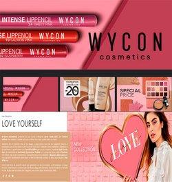 Catalogo Wycon ( Scaduto )
