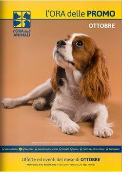 Offerte di Animali nella volantino di L'ora degli animali ( Per altri 9 giorni)