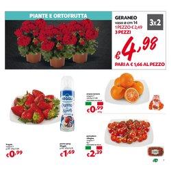 Offerte di Italia a Superstore Pam
