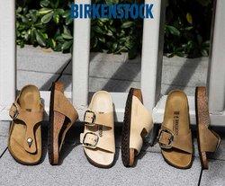 Catalogo Birkenstock ( Scade oggi)