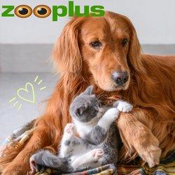 Offerte Animali nella volantino di Zooplus a Parma ( Per altri 2 giorni )