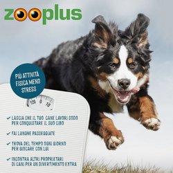 Offerte Animali nella volantino di Zooplus a Milano ( 2  gg pubblicati )