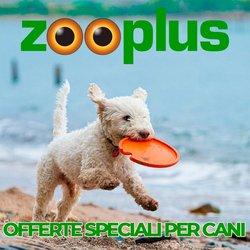 Offerte di Animali nella volantino di Zooplus ( Scade oggi)