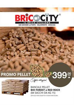 Offerte Bricolage e Giardino nella volantino di BricoCity a Augusta ( Per altri 12 giorni )