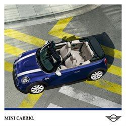 Catalogo MINI ( Scaduto )