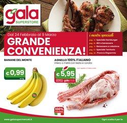 Catalogo Gala ( Scaduto )