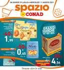 Catalogo Spazio Conad Adriatico ( Pubblicato ieri )