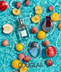 Catalogo Douglas a Albenga ( Per altri 5 giorni )