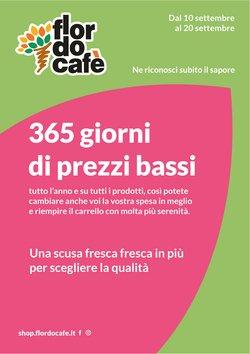 Catalogo Flor do cafe ( Scade oggi)