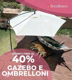 Offerte di Bricolage e Giardino nella volantino di Brico Bravo ( Pubblicato oggi)