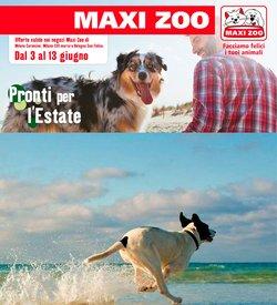Offerte di Svago e Tempo Libero nella volantino di Maxi Zoo ( Scade oggi)