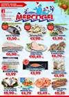 Catalogo Mercogel ( Scaduto )