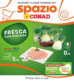 Catalogo Conad Superstore a Pisa ( Scade oggi )