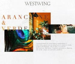 Catalogo Westwing ( Pubblicato oggi)