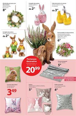 Offerte di Coniglio a NKD