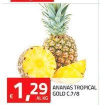 Offerta per Ananas tropical gold C.7/8 a 1.29€